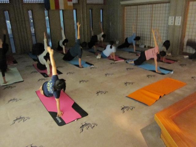 寺yogaの様子